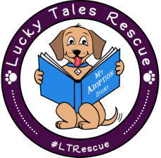 lucky-tales